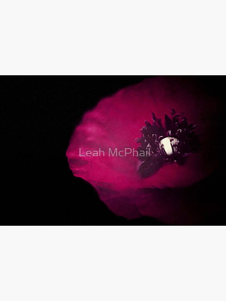 Poppy on Black  by LeahMcPhail