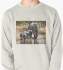 Elephant Mom and Babies Pullover