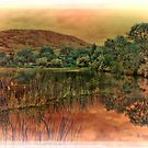 the pond by sbc7