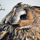 Eagle Owl Birthday Card by Lorna Mulligan