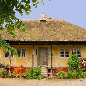 Aarhus Old Town - Den Gamle By by aislingk