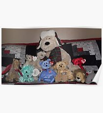 Collection of stuffed animals Poster