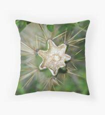 Broken Cactus Throw Pillow