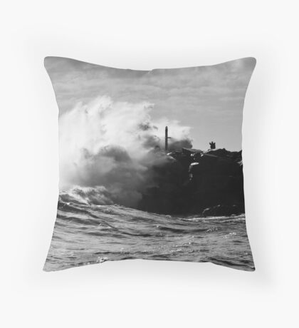 Catch This... Throw Pillow