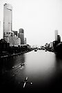 Yarra River in the Morning by Andrew Wilson
