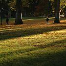 Autumn Light by vonb