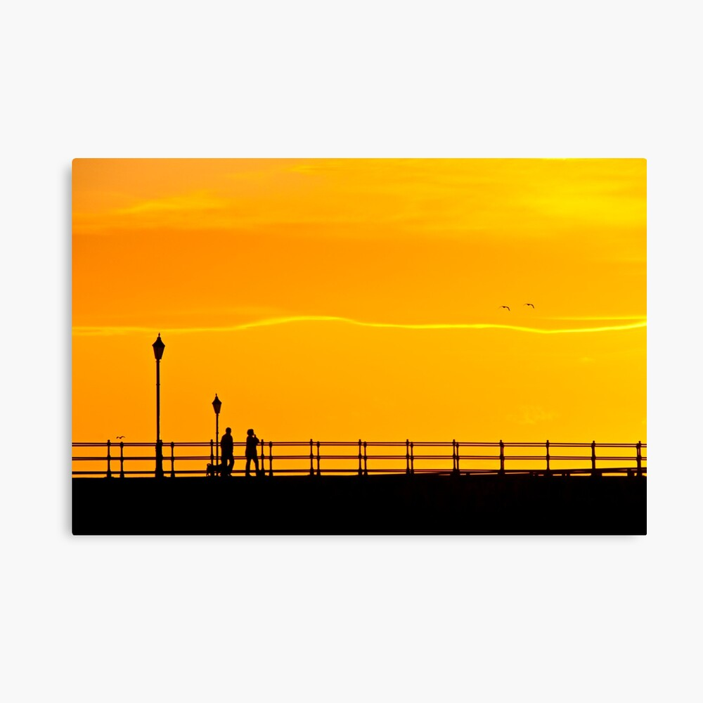 The watchers Canvas Print