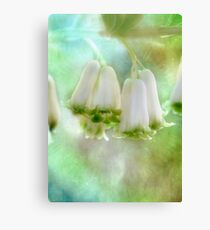 Bells Ring Out  Canvas Print