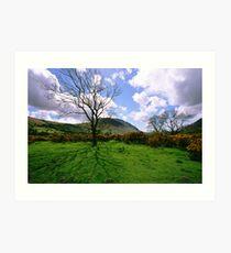 Wasdale Cumbria Art Print