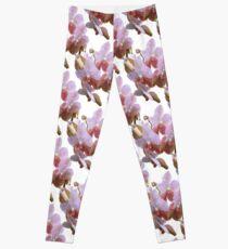 Orchid pattern Leggings