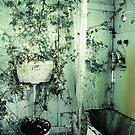 nature's bathroom by Lux Enbom