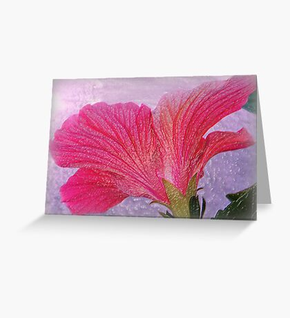 The Back of a Hibiscus, Textured Greeting Card