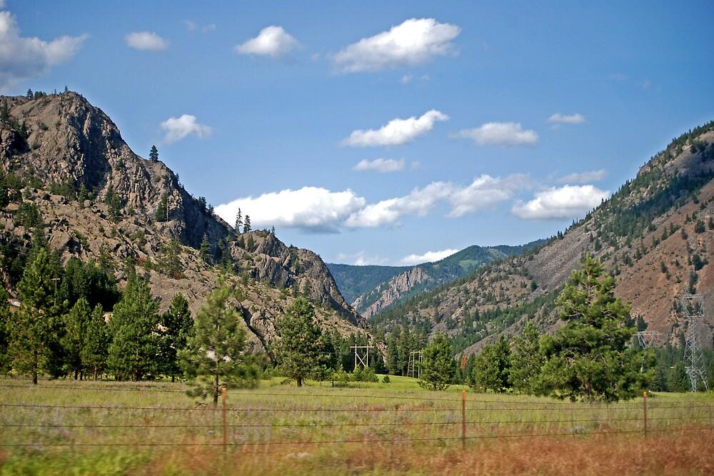 Summer in Sanders County (Montana) by Bryan D. Spellman