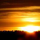 Arizona Sunset by Aaron Baker