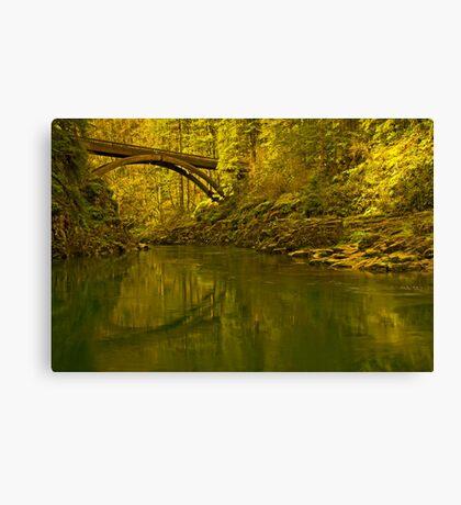 Footbridge Landscape Canvas Print