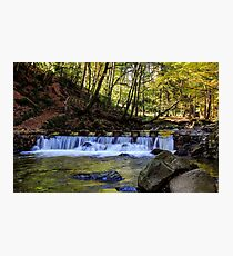 Small Steps In Tollymore Photographic Print