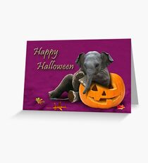 Halloween Elefant Grußkarte