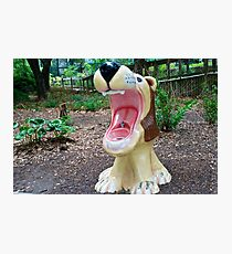 Drinking fountain in the Houston Zoo Photographic Print
