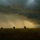 Thunder and Rain by Leasha Hooker