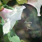 Friendship Card by Lozzar Flowers & Art