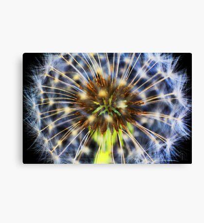 Colour fountain Canvas Print