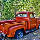 '56 Ford Truck by Bryan D. Spellman