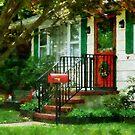 Home That Always Celebrates Christmas by Susan Savad