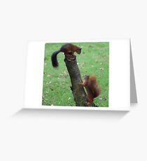 Get off my tree Greeting Card