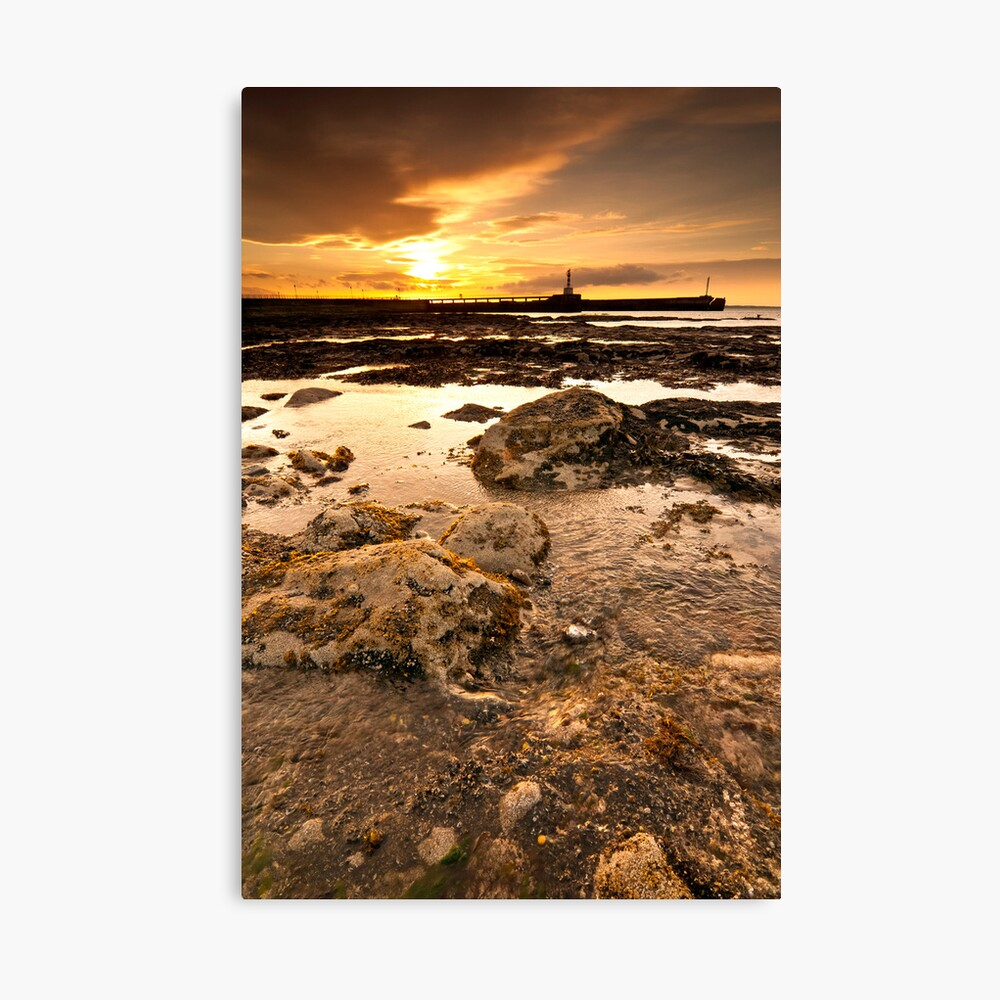 Twin Piers Canvas Print
