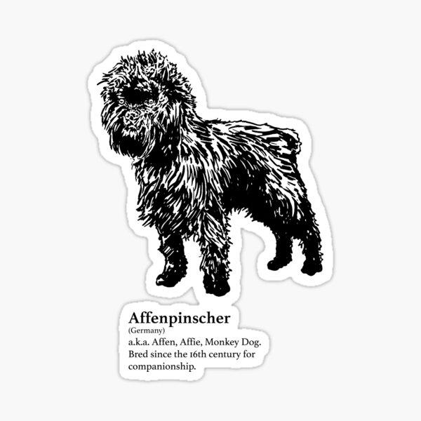 Affenpinscher Sticker