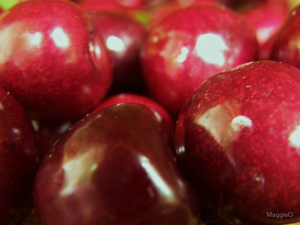 Juicy Plump Ripe Red Cherries by MaggieO