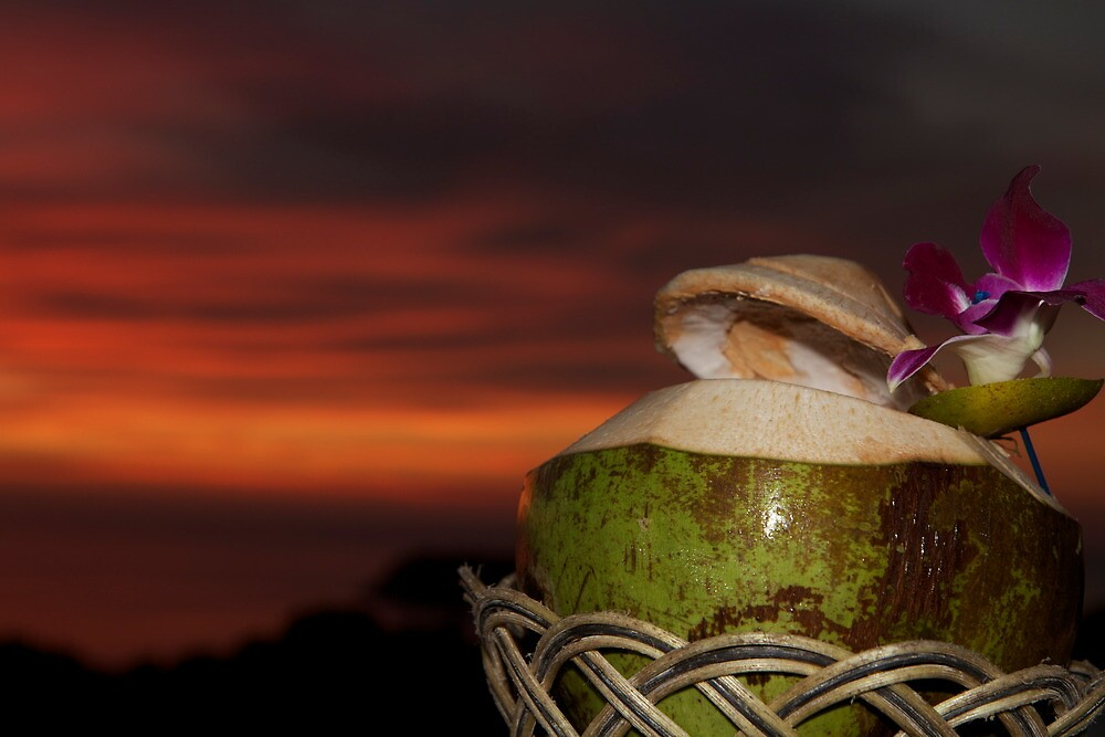 coconut sunset by styles