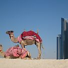 Desert Dreams by ardwork