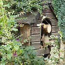 The Log Cabin by supernan
