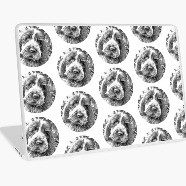 Sitting puppy Spinone Laptop Skin