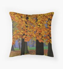 Top selling . Views:23572 ♥.  Forever Autumn   . Eye-catcher - For Sure ! Fav: 76.  Thx friends ! muchas gracias !!! This image Has Been S O L D . Buy what you like!  Throw Pillow