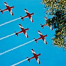 The Roulettes  by Ronald Rockman