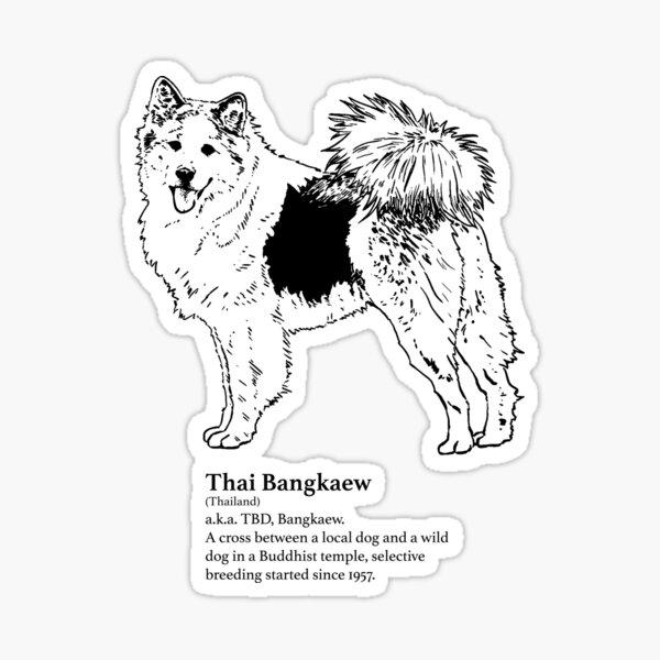 Thai Bangkaew Sticker