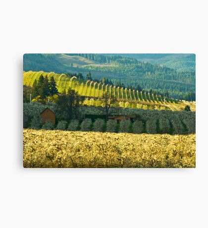 Hood River Valley Oregon Canvas Print