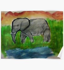 Elephant, watercolor Poster