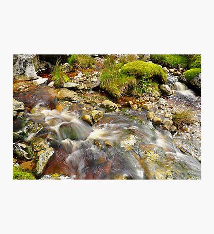 Wicklow Stream Photographic Print