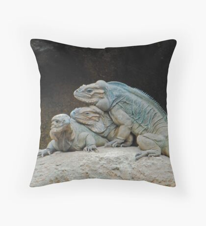 two's company three's a crowd Throw Pillow