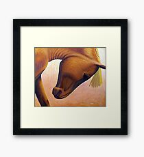Just Plain Horse Sense Framed Print