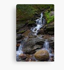 Feeding Bingham Falls Canvas Print