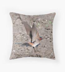Cliff Swallow Spread Throw Pillow