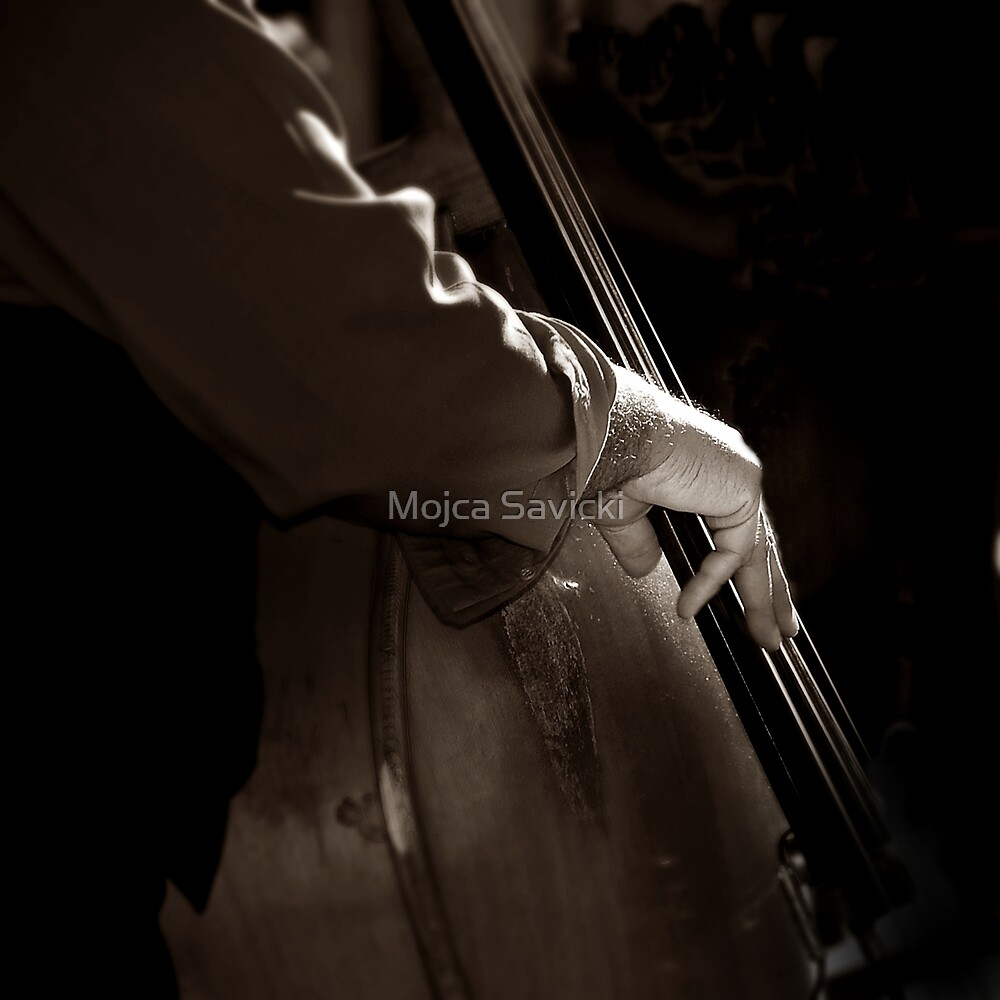Bass Strings by Mojca Savicki
