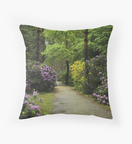 Color path. Throw Pillow