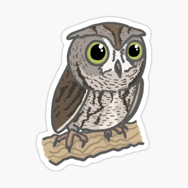 Western Screech Owl Cartoon Drawing Sticker