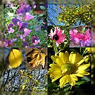 Autumn Leaves and Flowers Collage in Mirrored Frame von BlueMoonRose