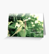 Celebrating the Miracle of His Life - Birthday or Special Date Greeting Card